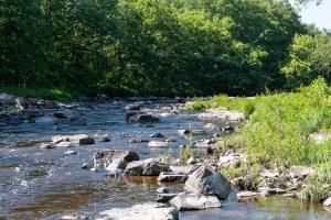 Little Bull Falls - Upstream rapids