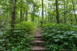 Perrot State Park - Steep trail heading up to Perrot Ridge