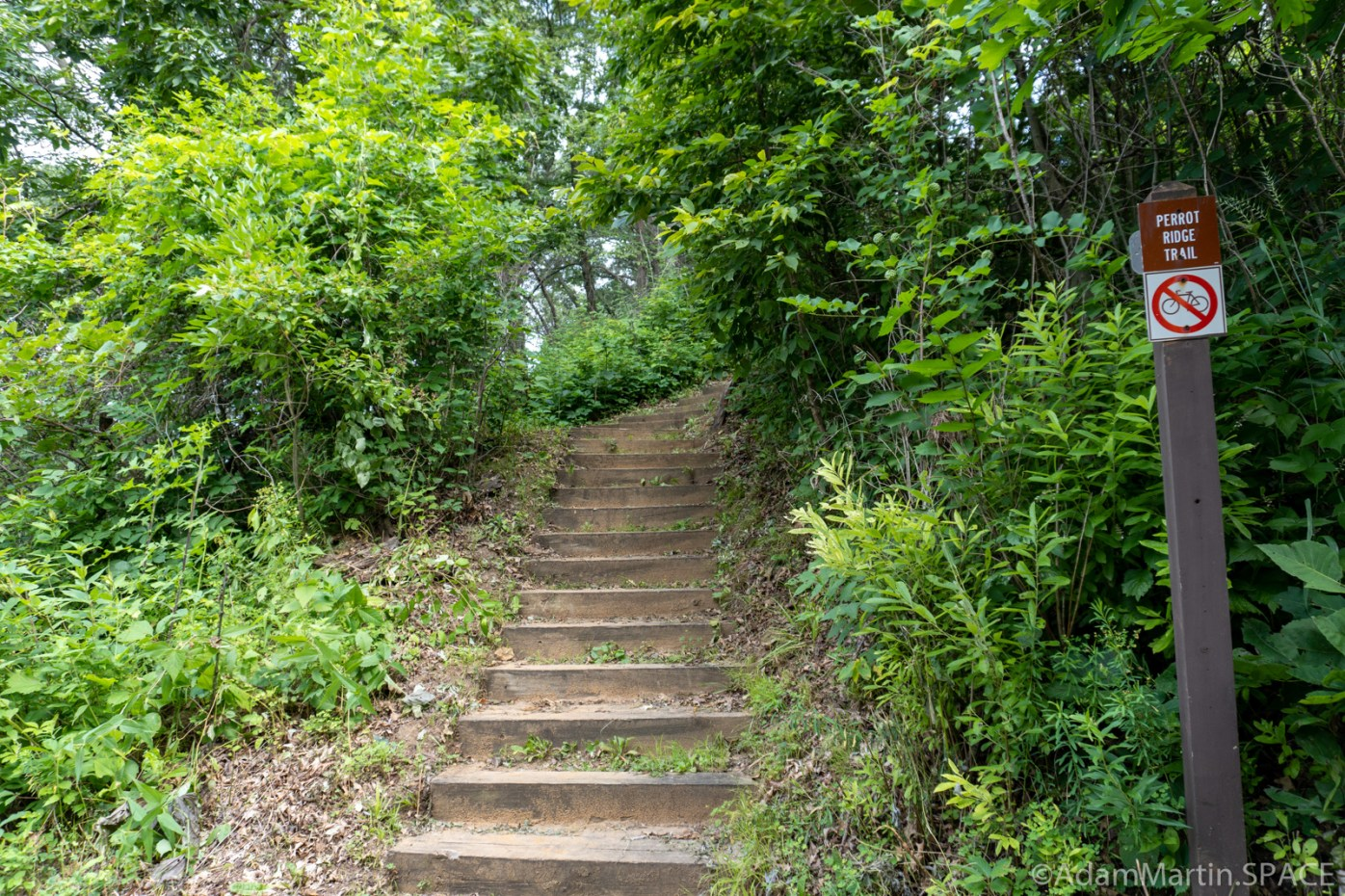 Perrot State Park - Steep stairs heading up to Perrot Ridge