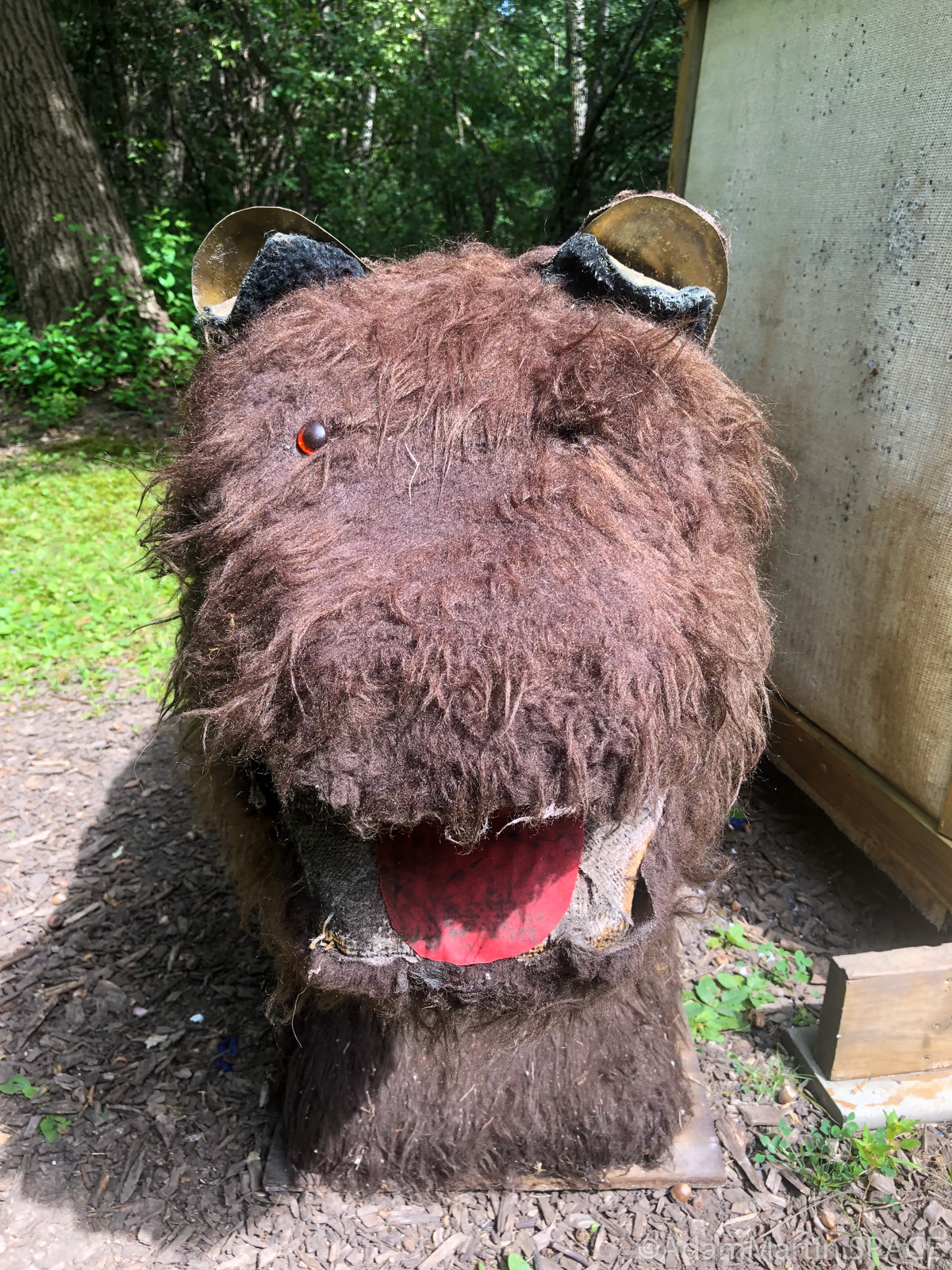 Safari Shoot @ West Allis Bowmen - Mystery creature target