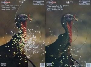 "Pattern using Hevi-Shot Magnum Blend 3"" #5/6/7 shot"