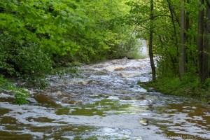 Baird Creek - Rapids downstream of the upper falls