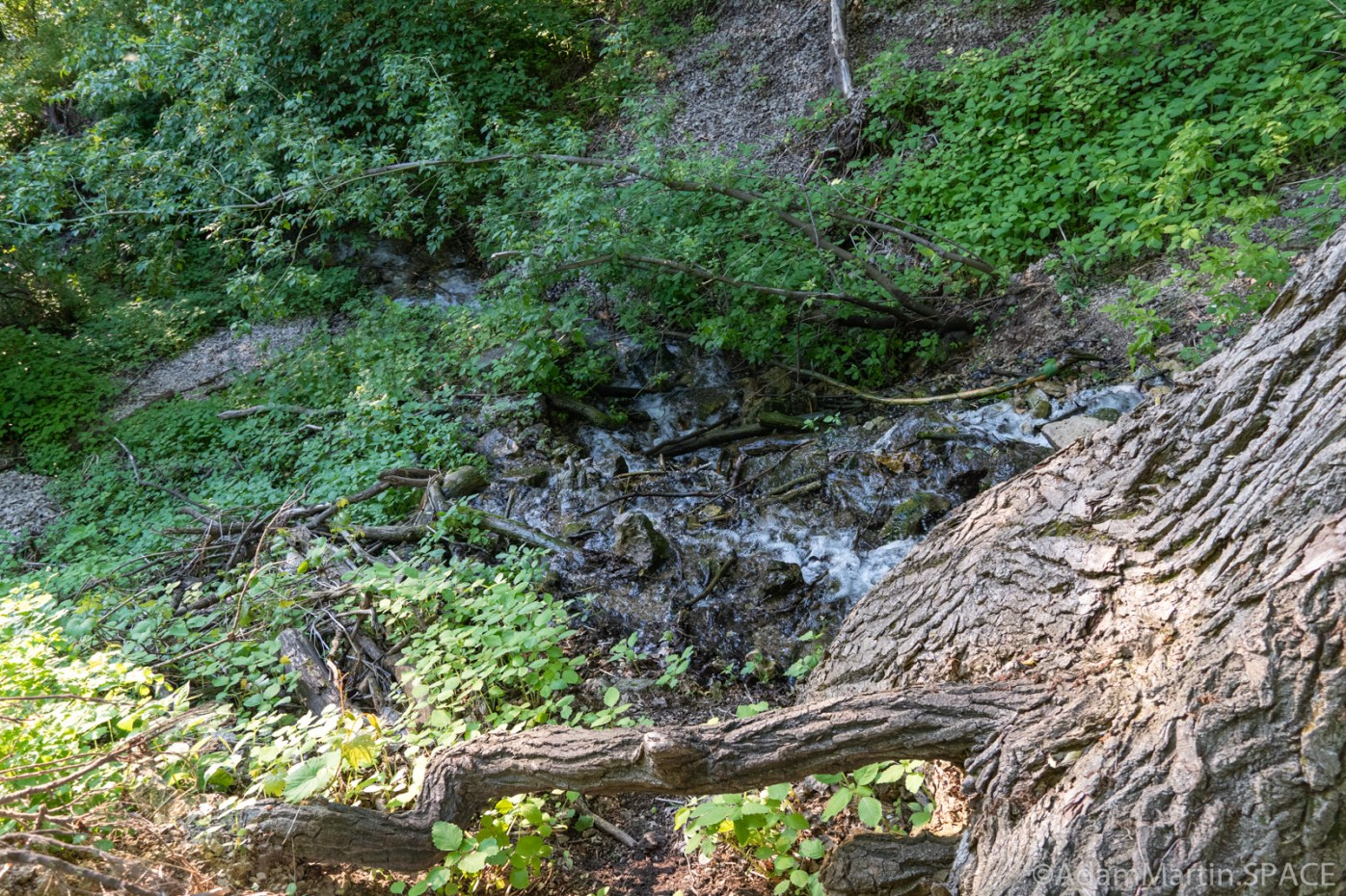 High Cliff State Park - Lime Kiln Falls (Lower)