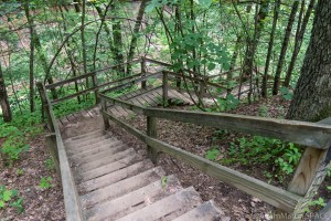 Devil's Punchbowl - Stairs going down to the gorge