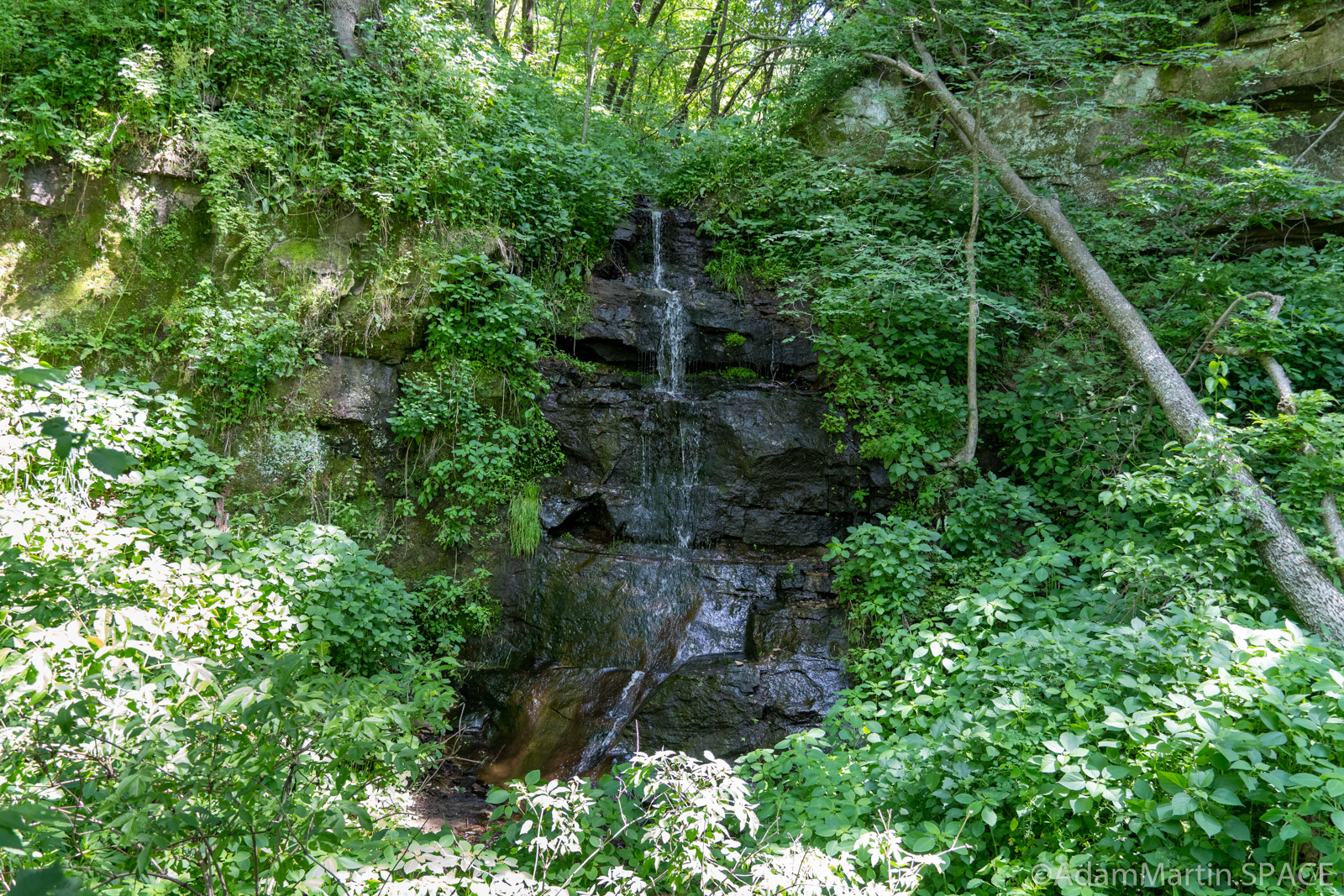 Red Cedar Waterfall - Direct View