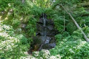 Red Cedar Waterfall - Direct View