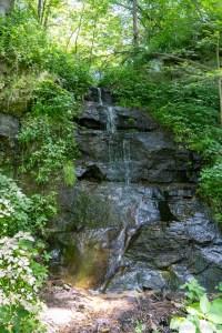 Red Cedar Waterfall - Low Angle View