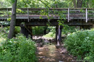 Tripp Falls - Red Cedar Trail bridge passing over the creek