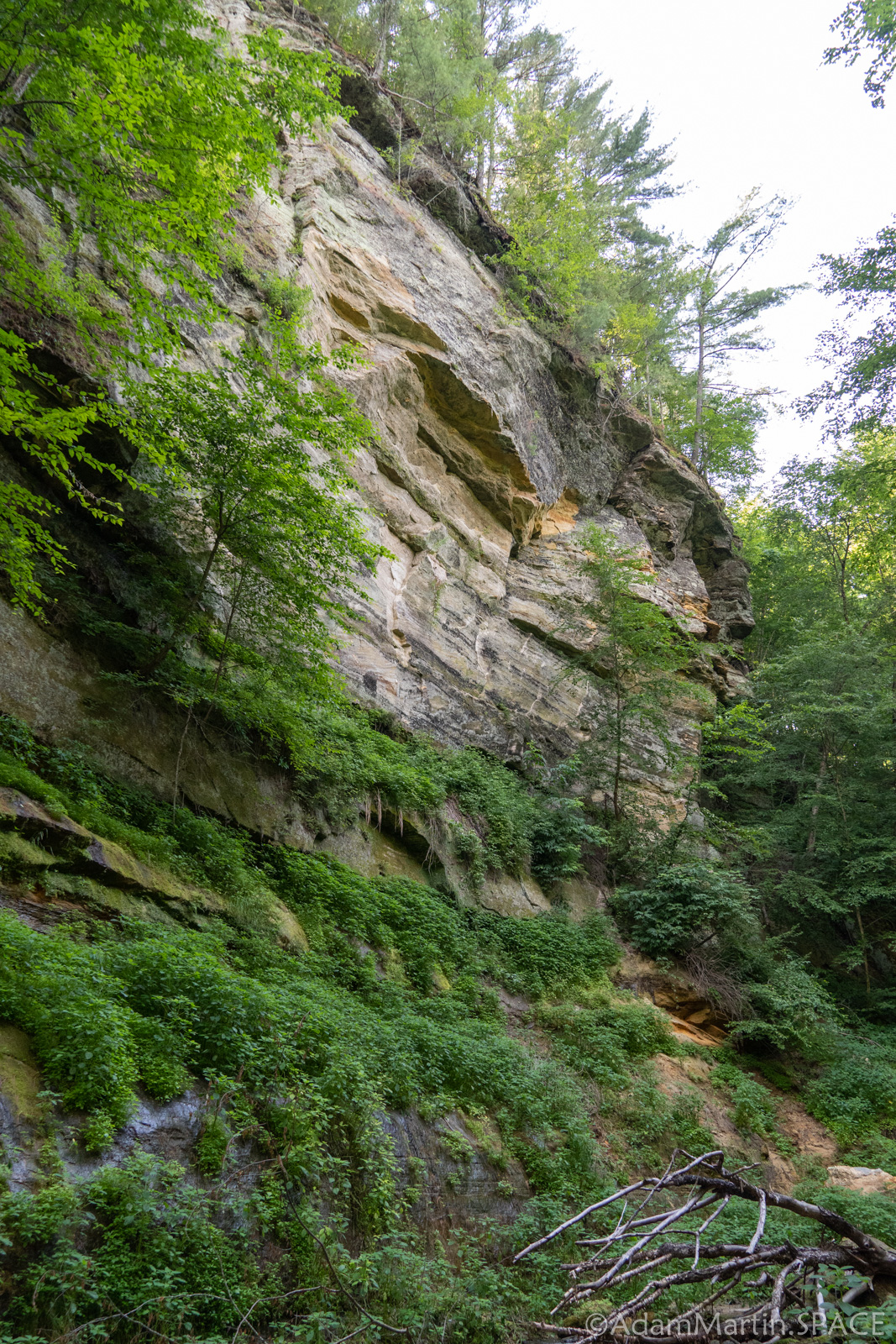 Large exposed cliffside view while hiking down Roaring Creek