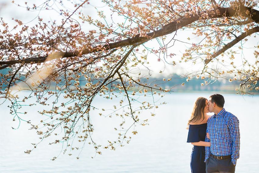 cute cherry blossoms engagement photo by Washington DC Wedding Photographer Adam Mason
