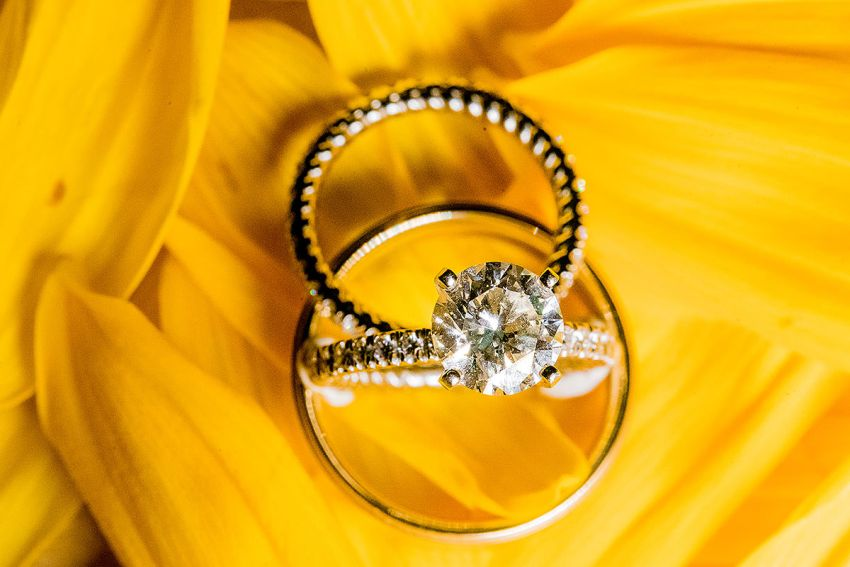 sunflower wedding ring photos at wyndridge farm by Washington DC Wedding Photographer Adam Mason