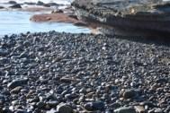 Rocks at the tidal pool