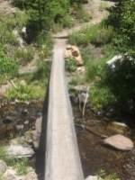 I found this little footbridge along the Pacific Crest Trail while trying my best to get un-lost on my first fishing adventure of the week.