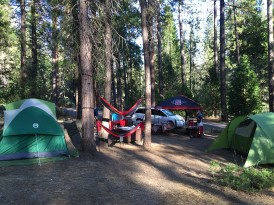 Early look at camp