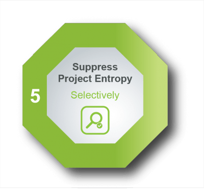 Project Action Principle #5: Suppress Project Entropy, Selectively
