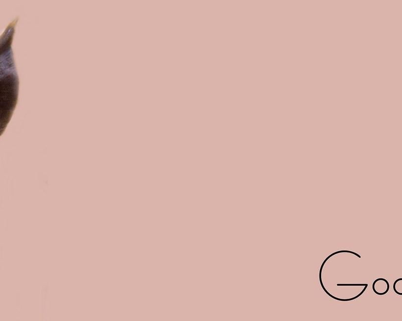 Mel Robbins – Jak przestać podkładać sobie świnię?