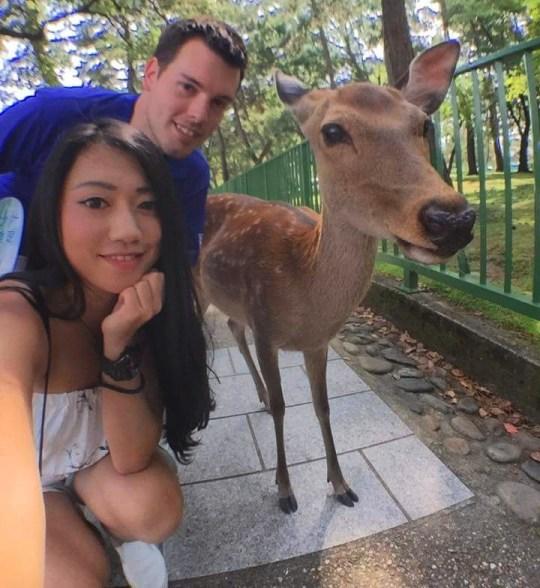 Nara Park Deer Selfie