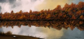 O_Still Water Reflection
