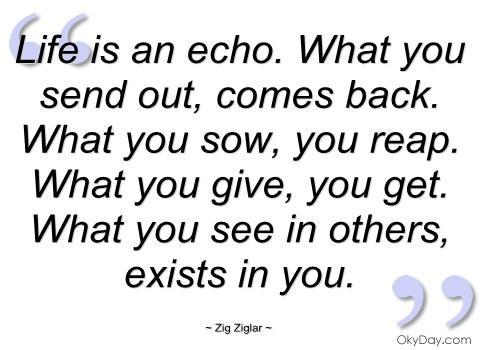 life-is-an-echo-zig-ziglar