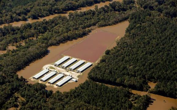 A flooded CAFO farm in North Carolina on October 11. | Photo courtesy of Rick Dove/Waterkeeper Alliance