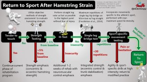 Evidence-Based Return-to-Play Protocol Following Hamstring Strains