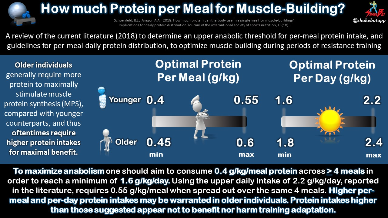 Per-Meal Protein Intake to Optimize Muscle-Building from Resistance Training