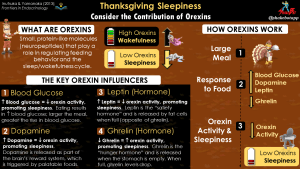 The Main Reason Why You're Sleepy on Thanksgiving