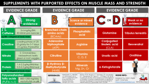 Evidence Grades for Supplements with Purported Effects on Muscle Mass and Strength