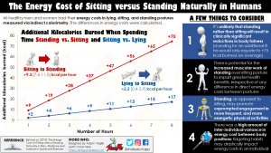 The Additional Calories Burned When Standing vs. Sitting and Sitting vs. Lying Down in Humans