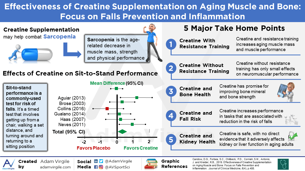 Effectiveness of Creatine Supplementation on Aging Muscle and Bone: Focus on Falls Prevention and Inflammation