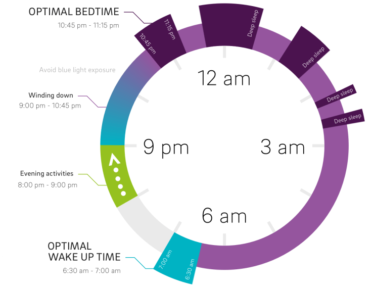 Optimal nocturnal sleep cycle