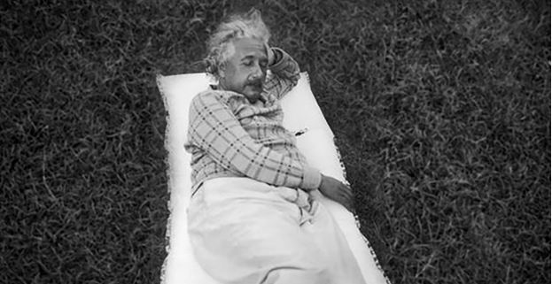 Einstein having a little afternoon nap outside. Method to his madness?