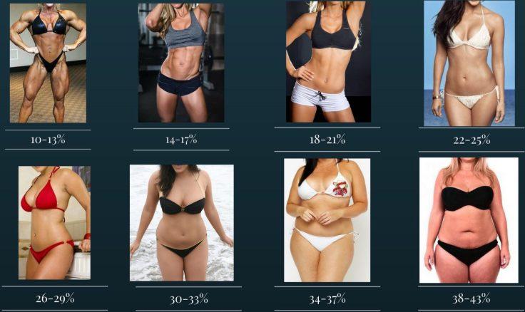 Female Body Fat Percentages