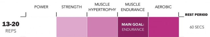 Rep Ranges for Muscle Endurance