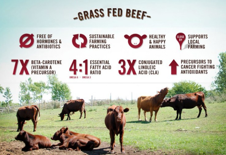 Benefits of Grass Fed