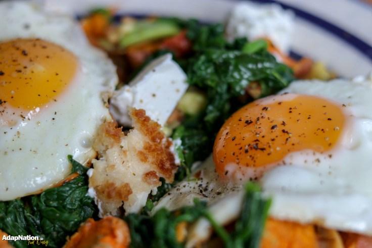 AdapNation's SP, Chicken, Egg & Veggie Hash Medley p4