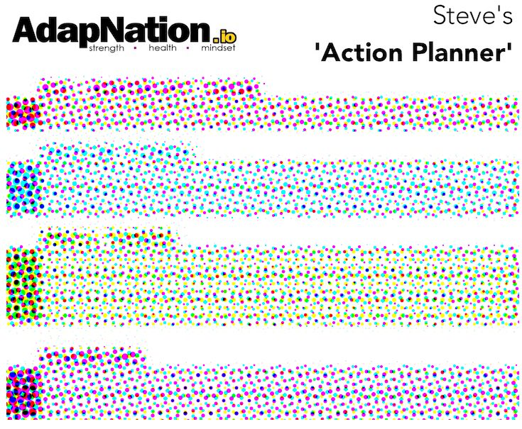 AdapNation Action Planner