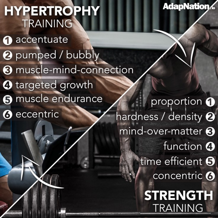 differences between strength and hypertrophy