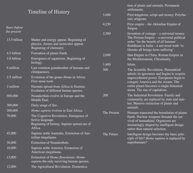 Brief human evolution timeline