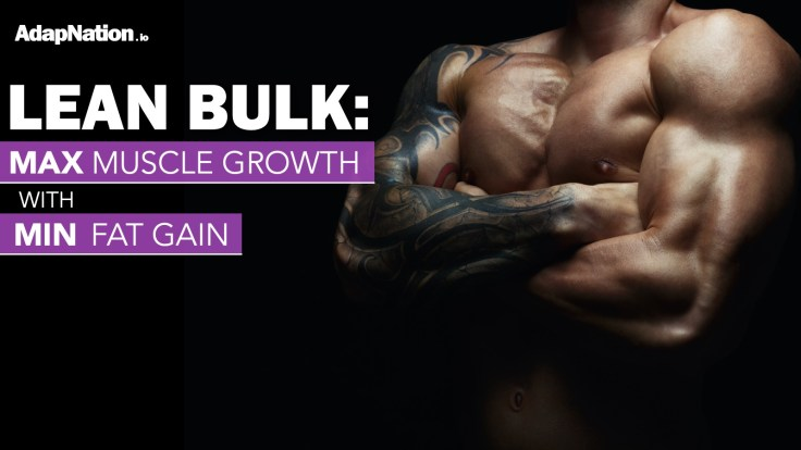 AdapNation Lean Bulk