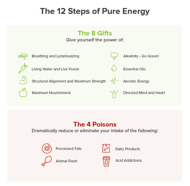 THE 10-DAY DIET CHALLENGE: 12 STEPS OF PURE ENERGY