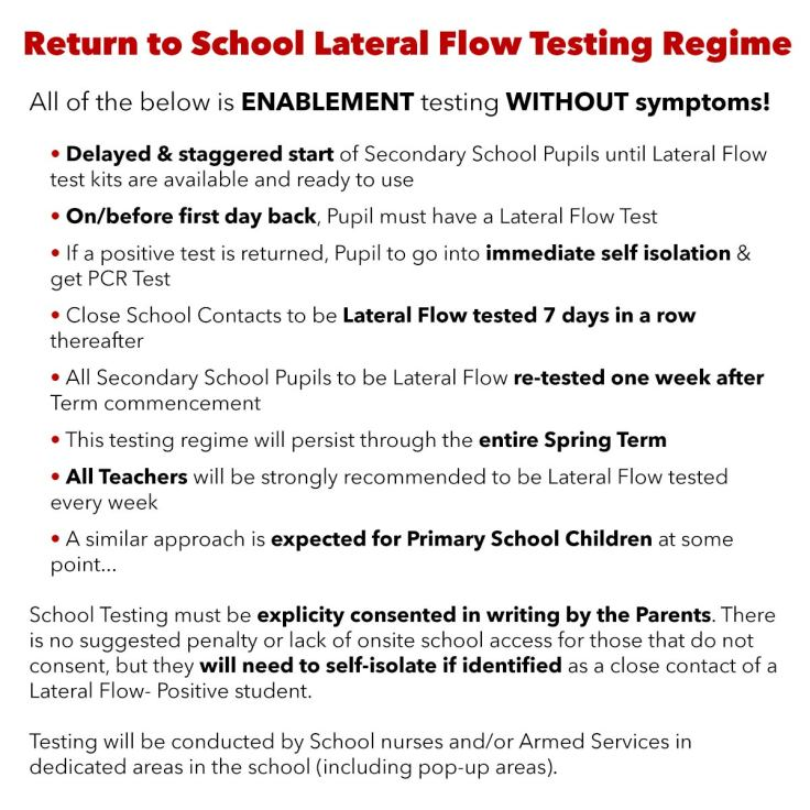 School Lateral Flow Enablement Testing