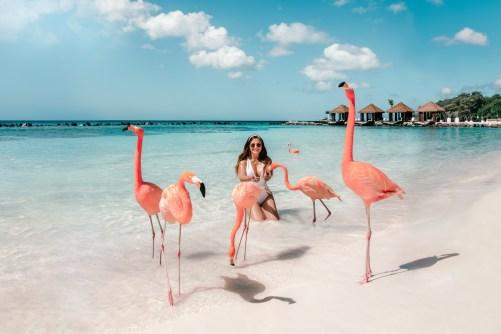 The Ultimate Aruba Travel Guide • ADARAS Blogazine