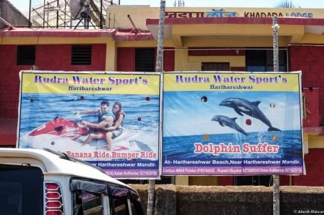 Sufferin' dolphins!