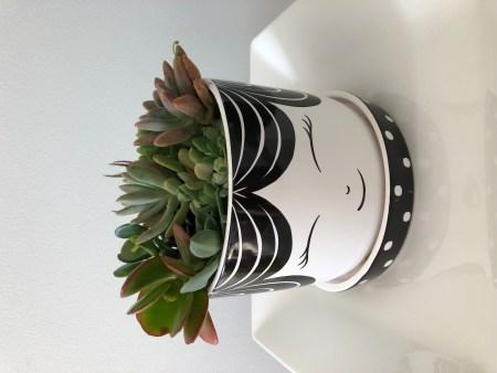 Pot, planter, A dash of green