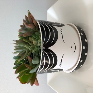 Pot, planter, A dash of green