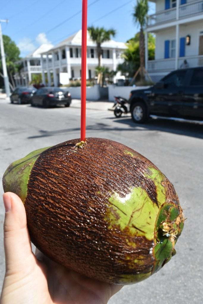 Coconuts - ADOS