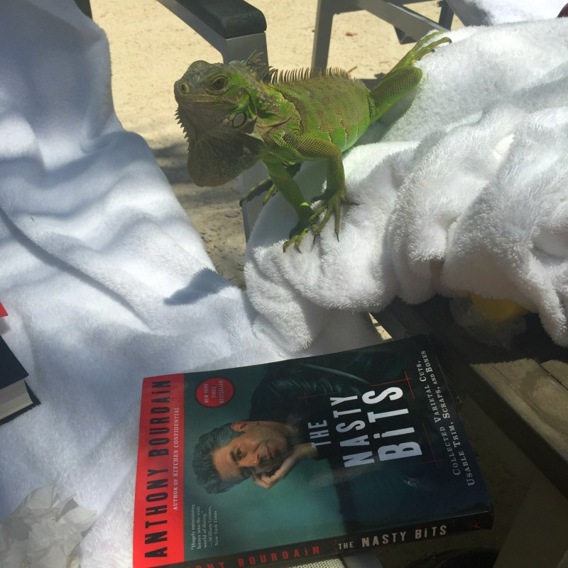Larry the lizard reading - ADOS