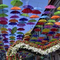 Colorful Umbrellas