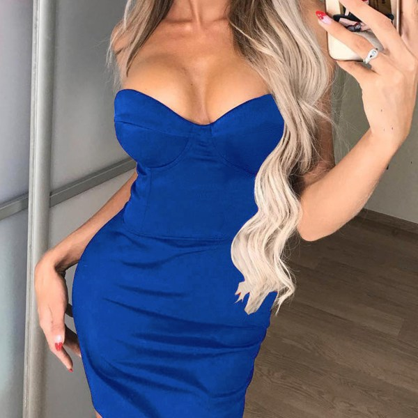 Blue Tube Top Sleeveless Dress 2